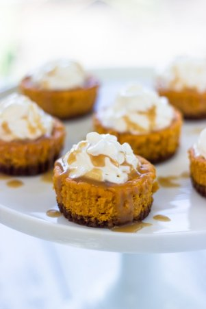 Mini Pumpkin Cheesecakes with Gingersnap Crust - ADA's 5 best thanksgiving recipes